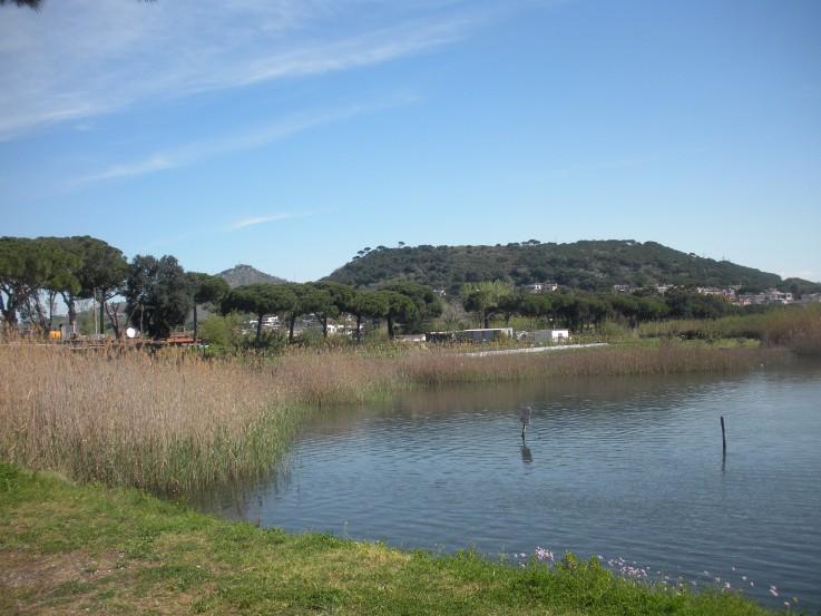 Lucrino averno montenuovo campi flegrei for Lago lucrino
